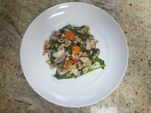 July 2018 – Farro Salad